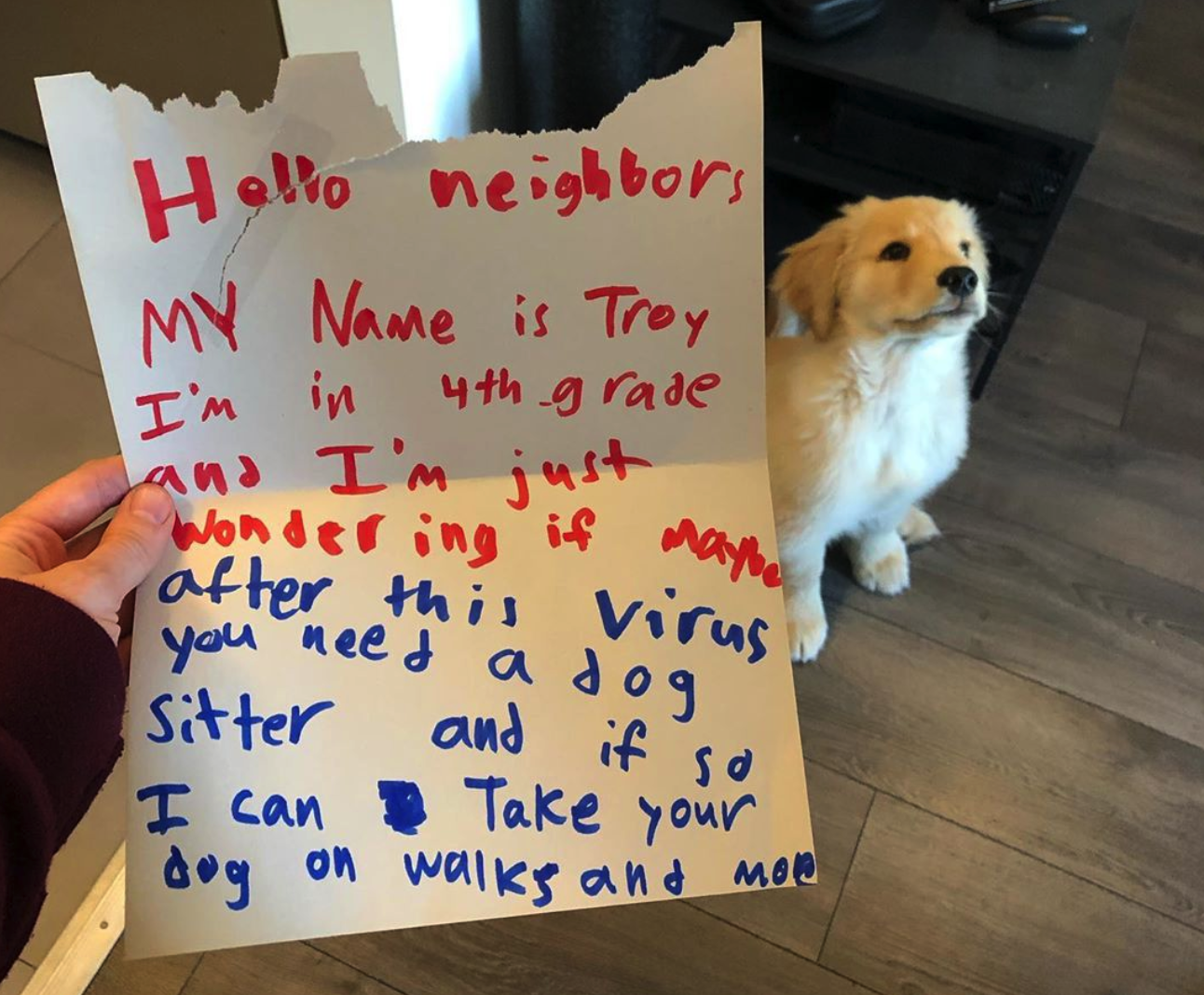 The Most Adorable Job Application In History