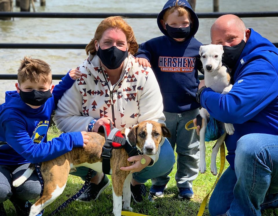 During Social Distancing, Rescues Are Doing Virtual Adoptions