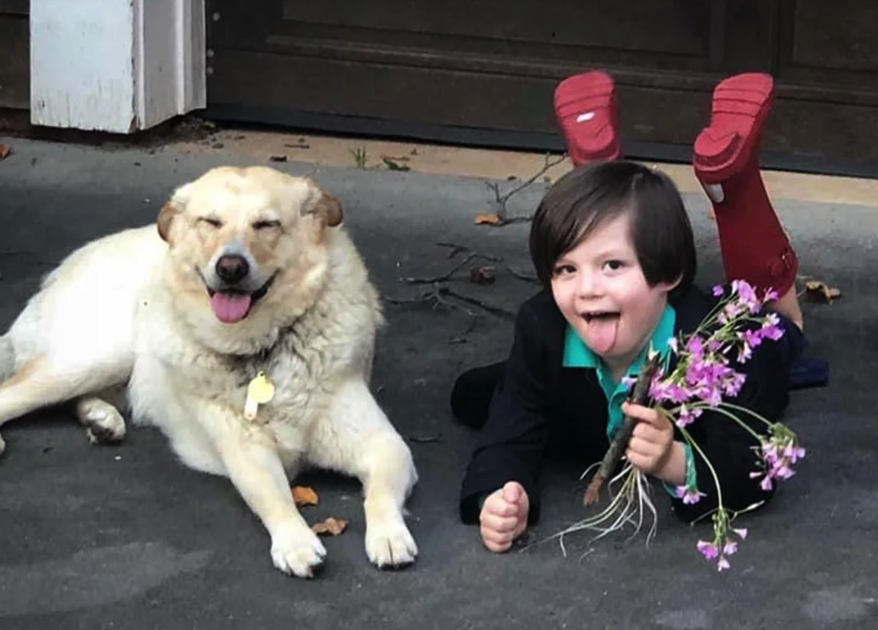 You Can't Legally Marry Your Dog, But This Kid Didn't Take No For An Answer