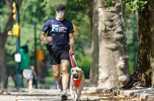 During COVID-19, Guide Dogs Are Going Above to Keep Blind Runners Healthy