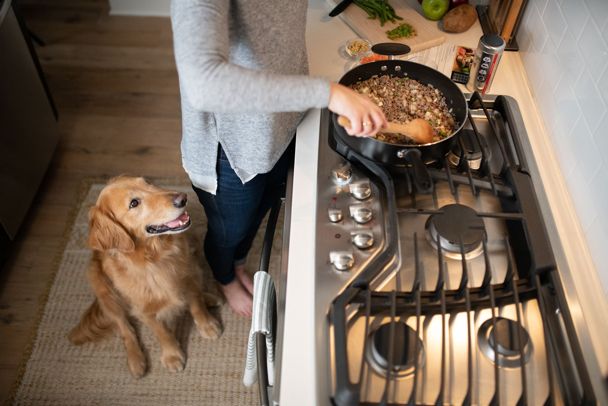 Prepare A Healthy Dinner For Your Dog With JustFoodForDogs!