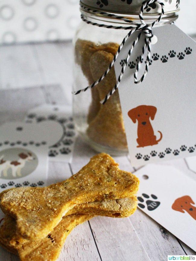 grain-free peanut butter pumpkin dog treats