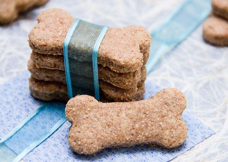 puppy treat, puppy treat recipe