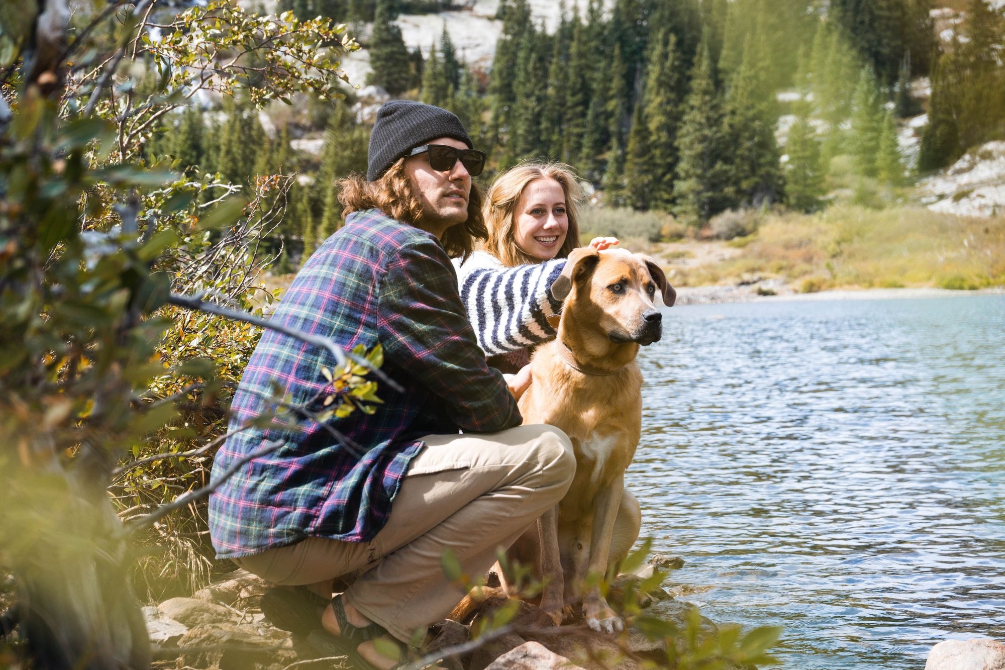 The 15 Most Dog-Friendly National Parks To Visit This Summer