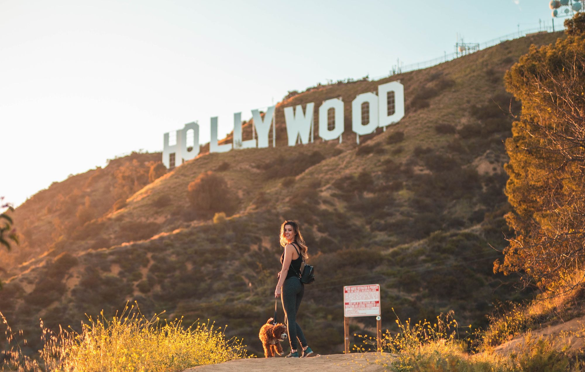 Top Things to Do with Your Dog in LA
