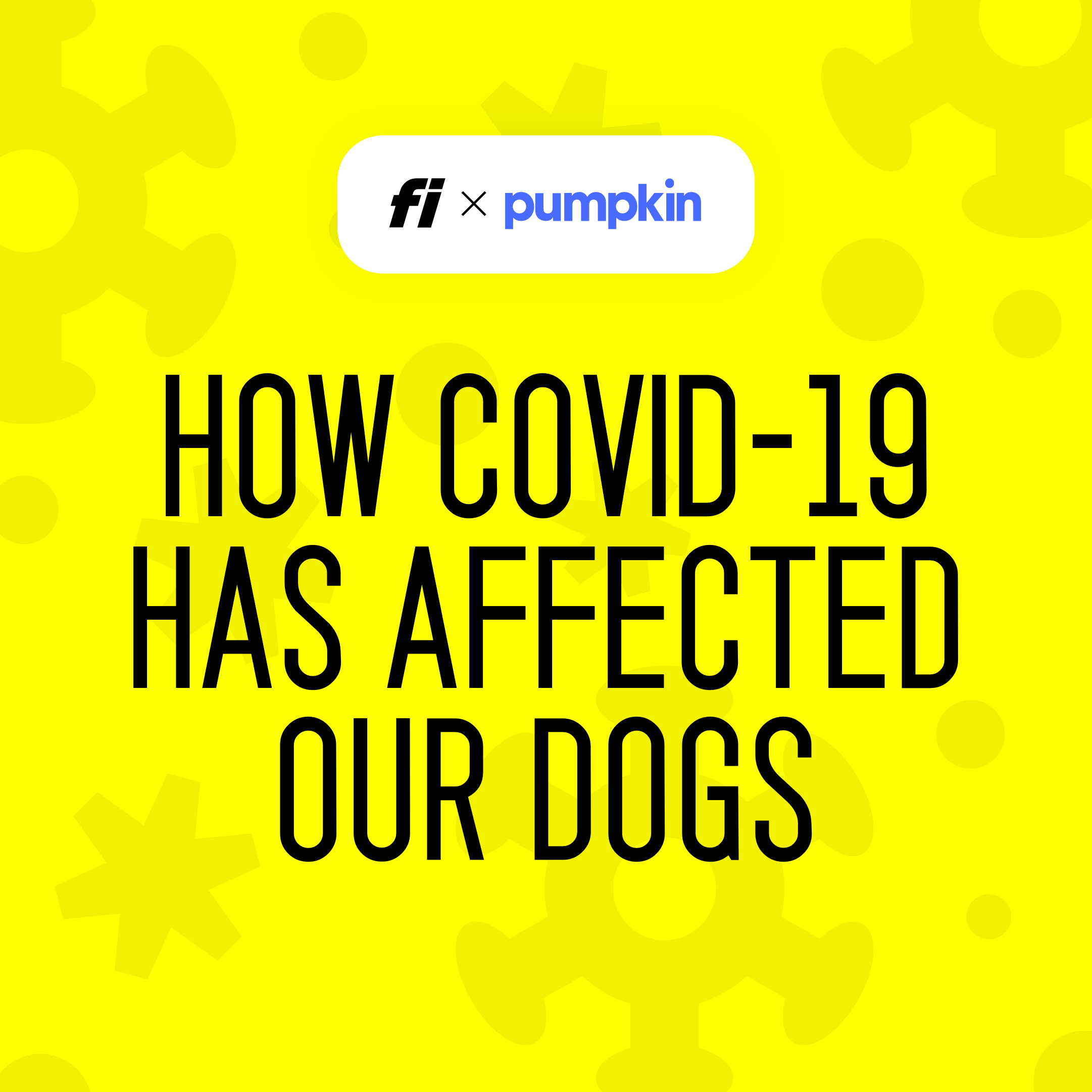 How Covid-19 Has Affected Our Dogs