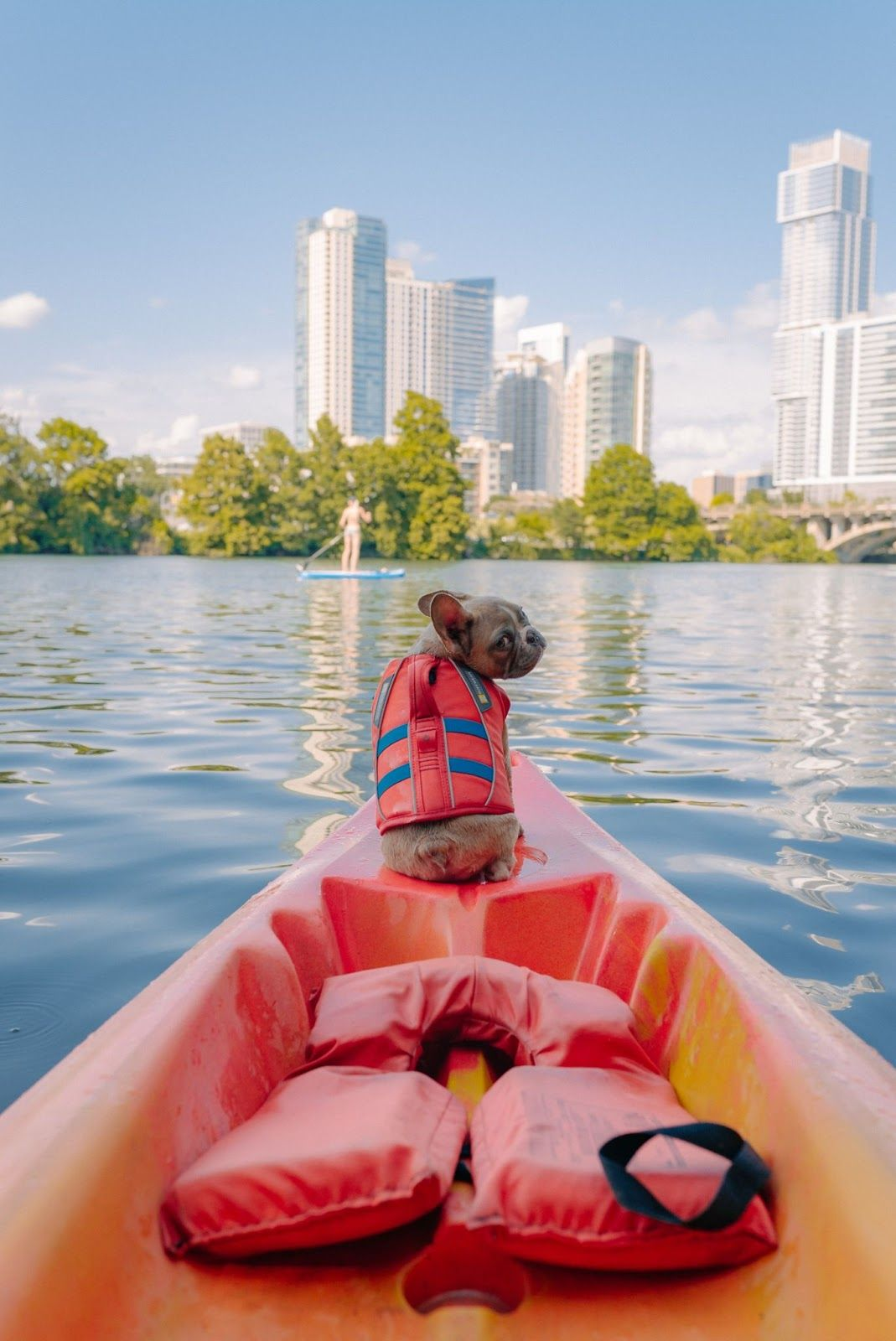 Guide to Canoeing & Kayaking with Your Dog