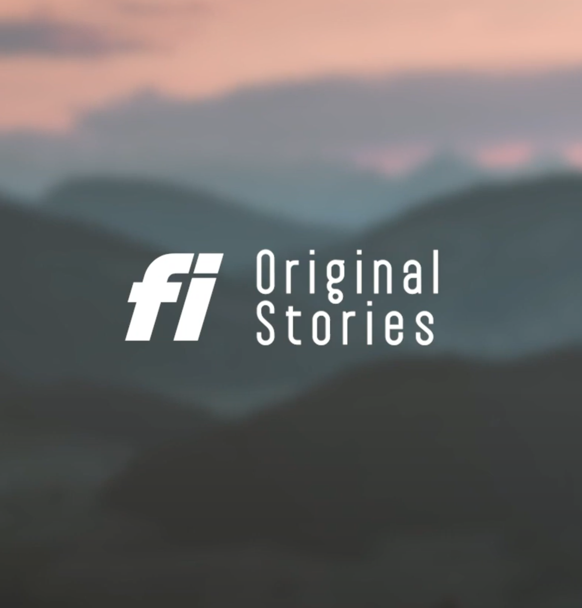 Fi Original Stories: Dog Found Across State Lines