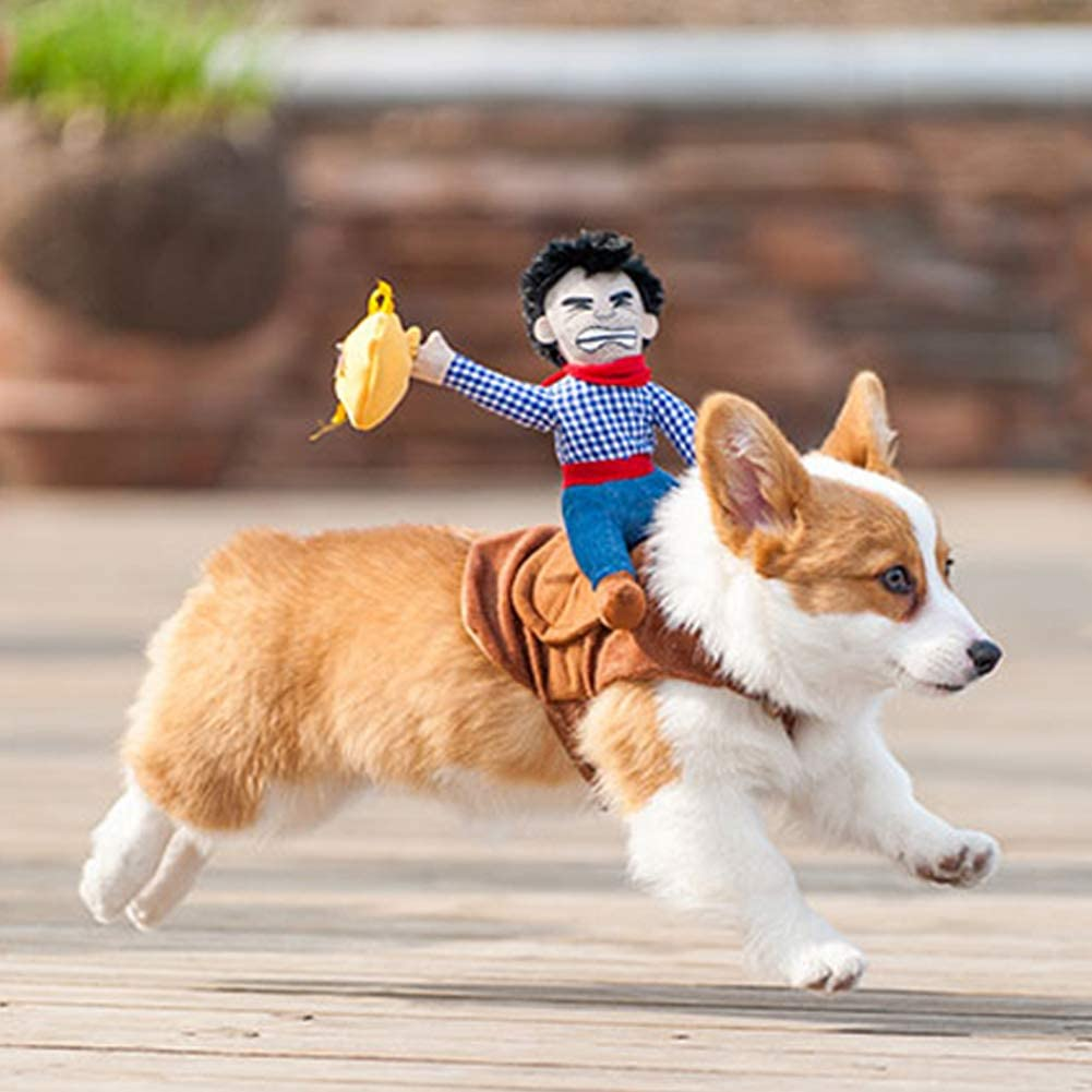 corgi running with a cowboy dog costume on