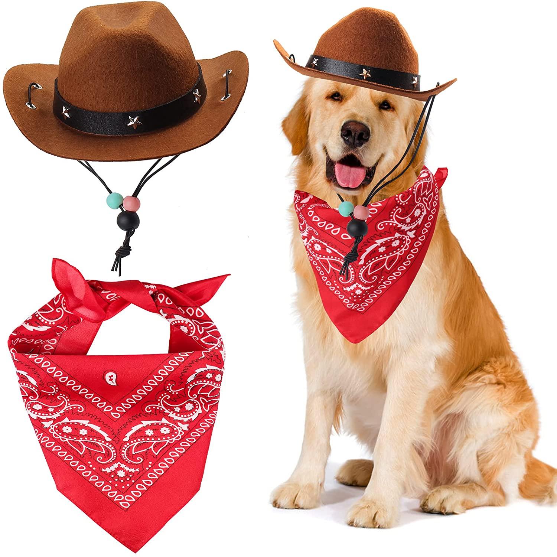 golden retriever wearing a cowboy dog costume for halloween