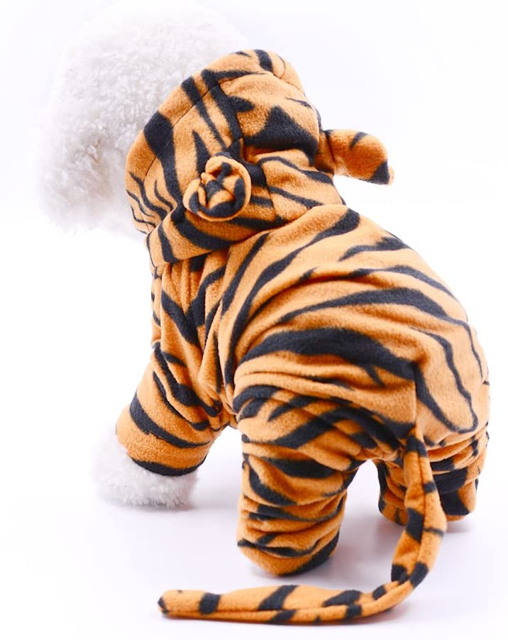 small white dog wearing a tiger costume