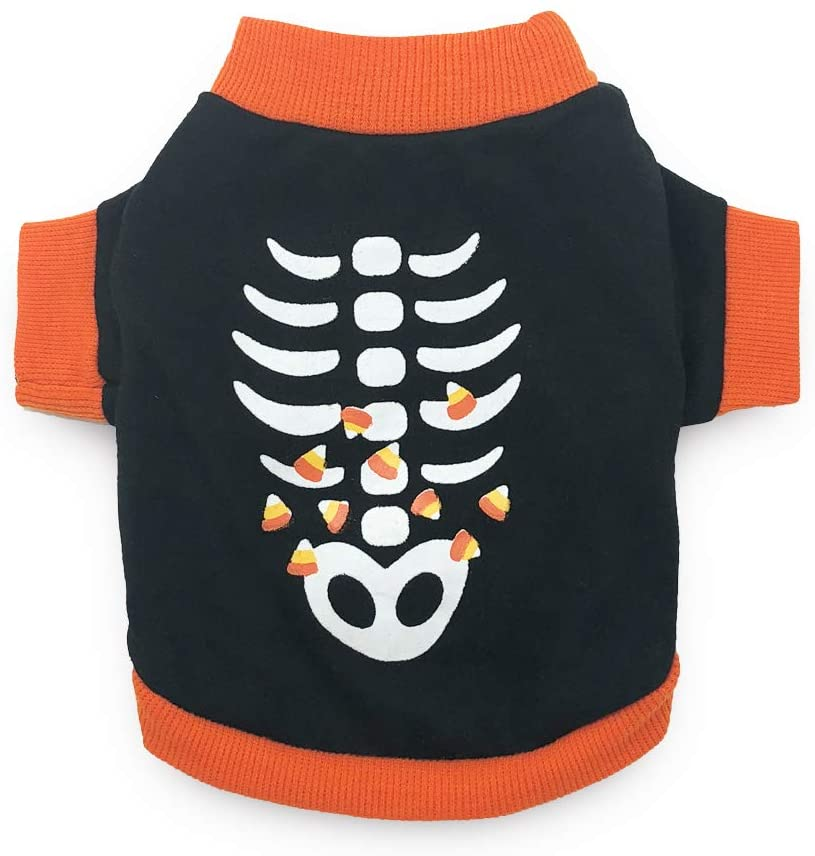 candy corn and skeleton dog costume