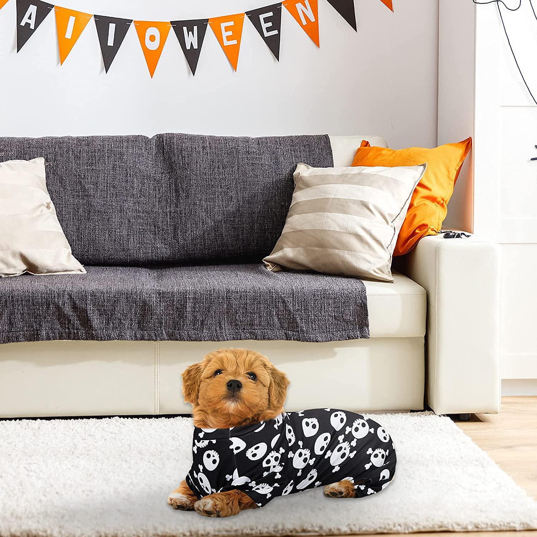 small brown dog at home, wearing skeleton dog pajamas
