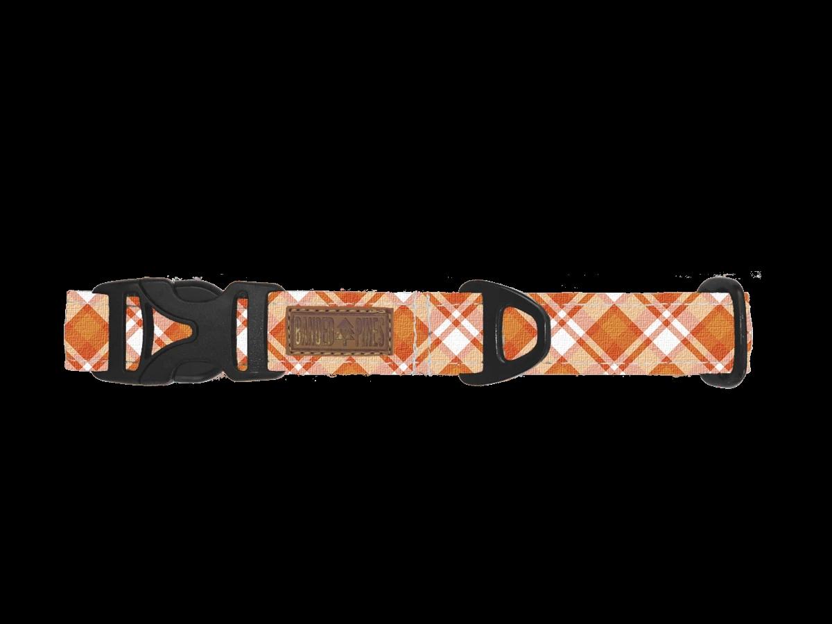orange plaid dog collar for halloween
