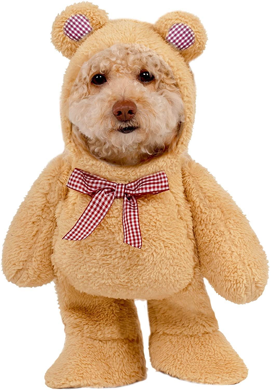 dog in tan teddy bear costume